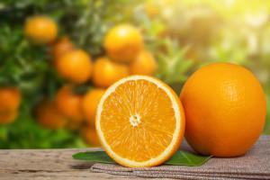 <a href='https://br.freepik.com/fotos/alimento'>Alimento foto criado por jcomp - br.freepik.com</a>